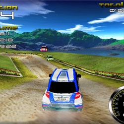 10. Rally Expedition 3D