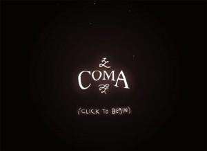 3.Coma