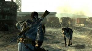 7.Fallout